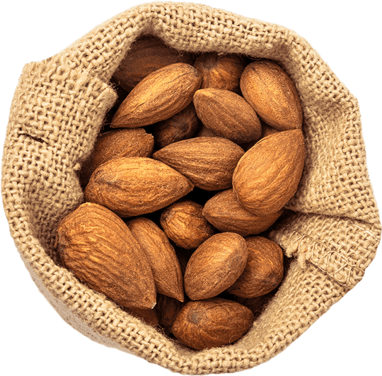 Our mills process Almonds to make healthy nut butter